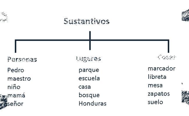 clasificación de los sustantivos