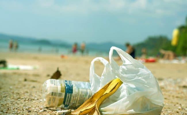 principales problemas medioambientales