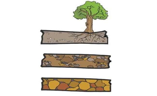 los horizontes del suelo y sus caracteristicas
