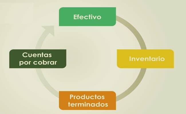 ciclo operativo de una empresa