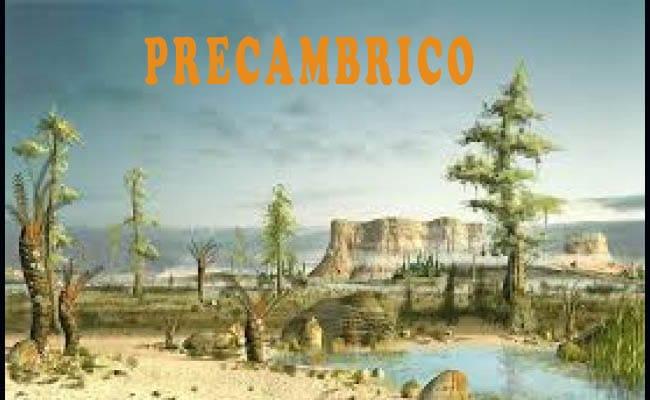 era precambrica paleozoica mesozoica cenozoica