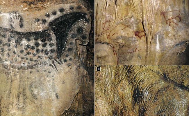 sahelanthropus tchadensis características culturales