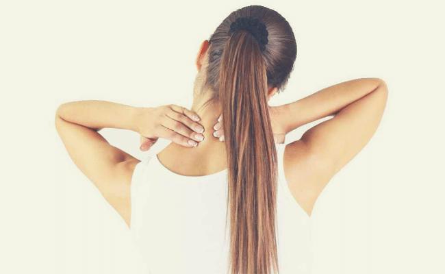 partes de la columna vertebral y sus funciones