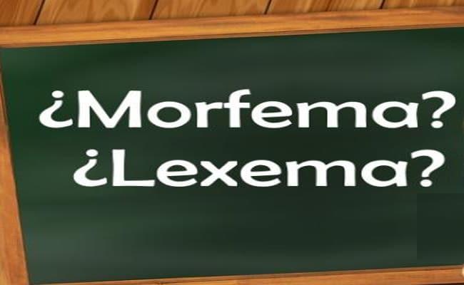 separador de lexemas y morfemas