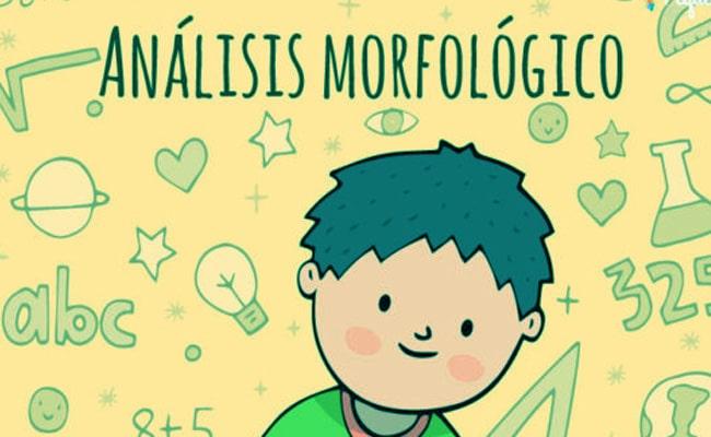 Análisis Morfológico Qué Es Y Sus Tipos
