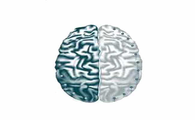 cuáles son los hemisferios del cerebro