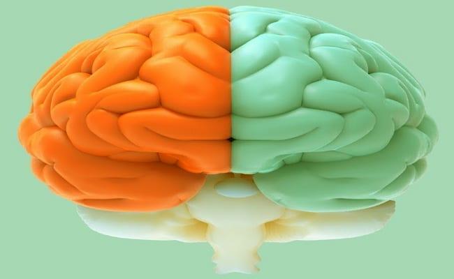 funciones de los hemisferios del cerebro