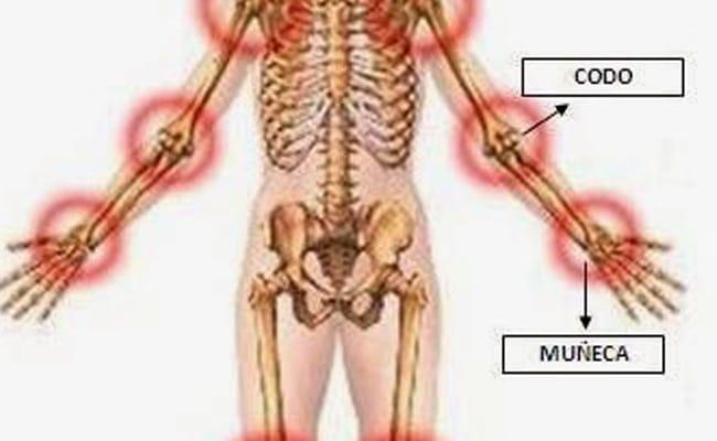 articulaciones del cuerpo humano tipos
