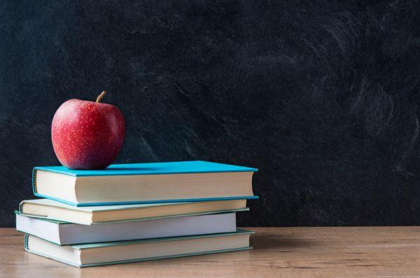 repaso-lengua-6o-primaria-temario-libros-y-manzana-istock