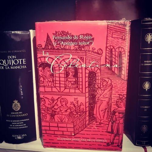 La celestina, libro junto a Don Quijote