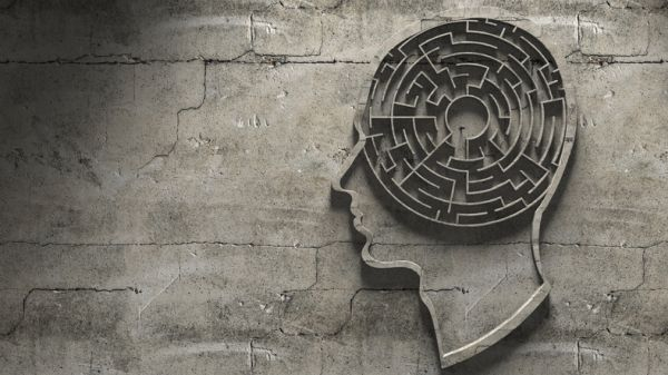 Cerebro laberinto