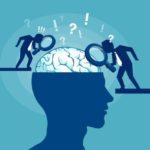 Examinando con lupa el cerebro